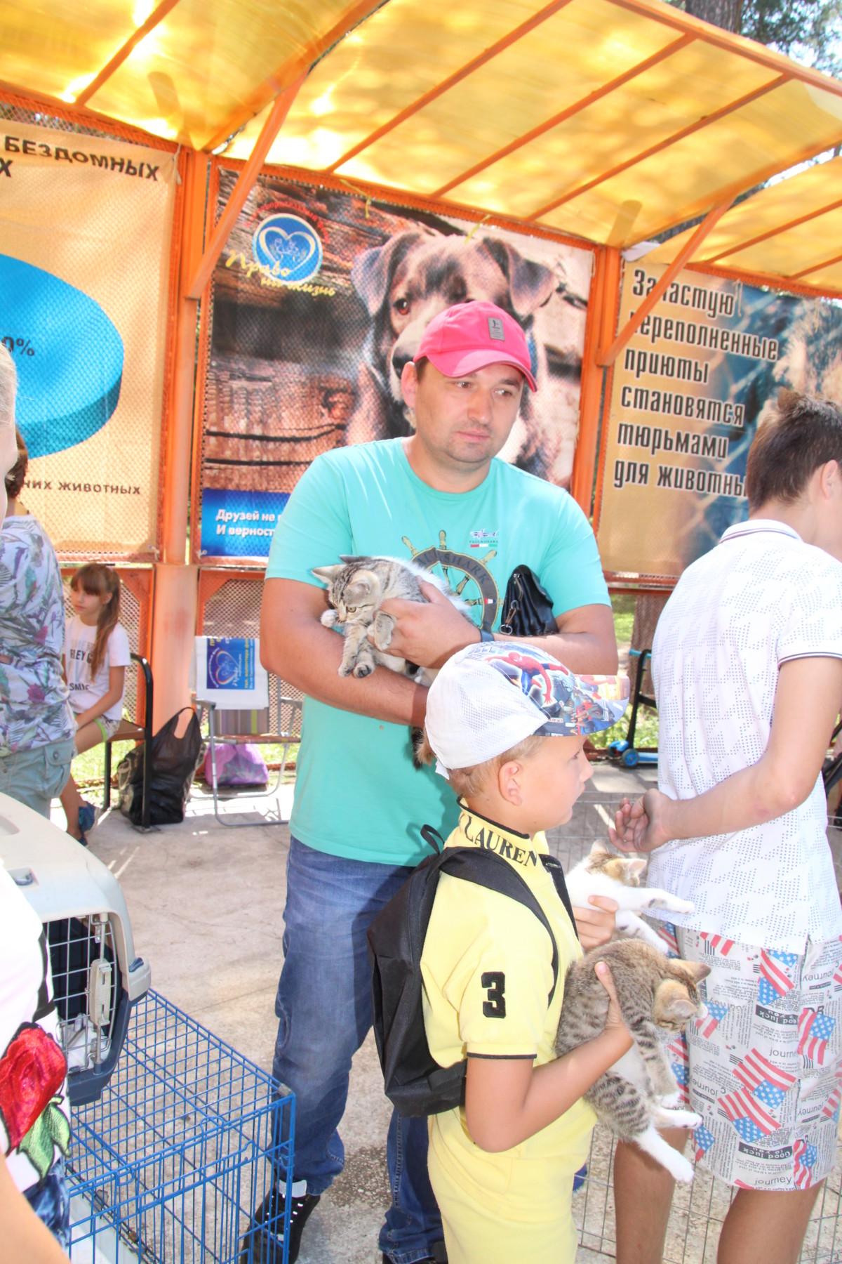 12 августа прошел Всемирный день бездомных животных