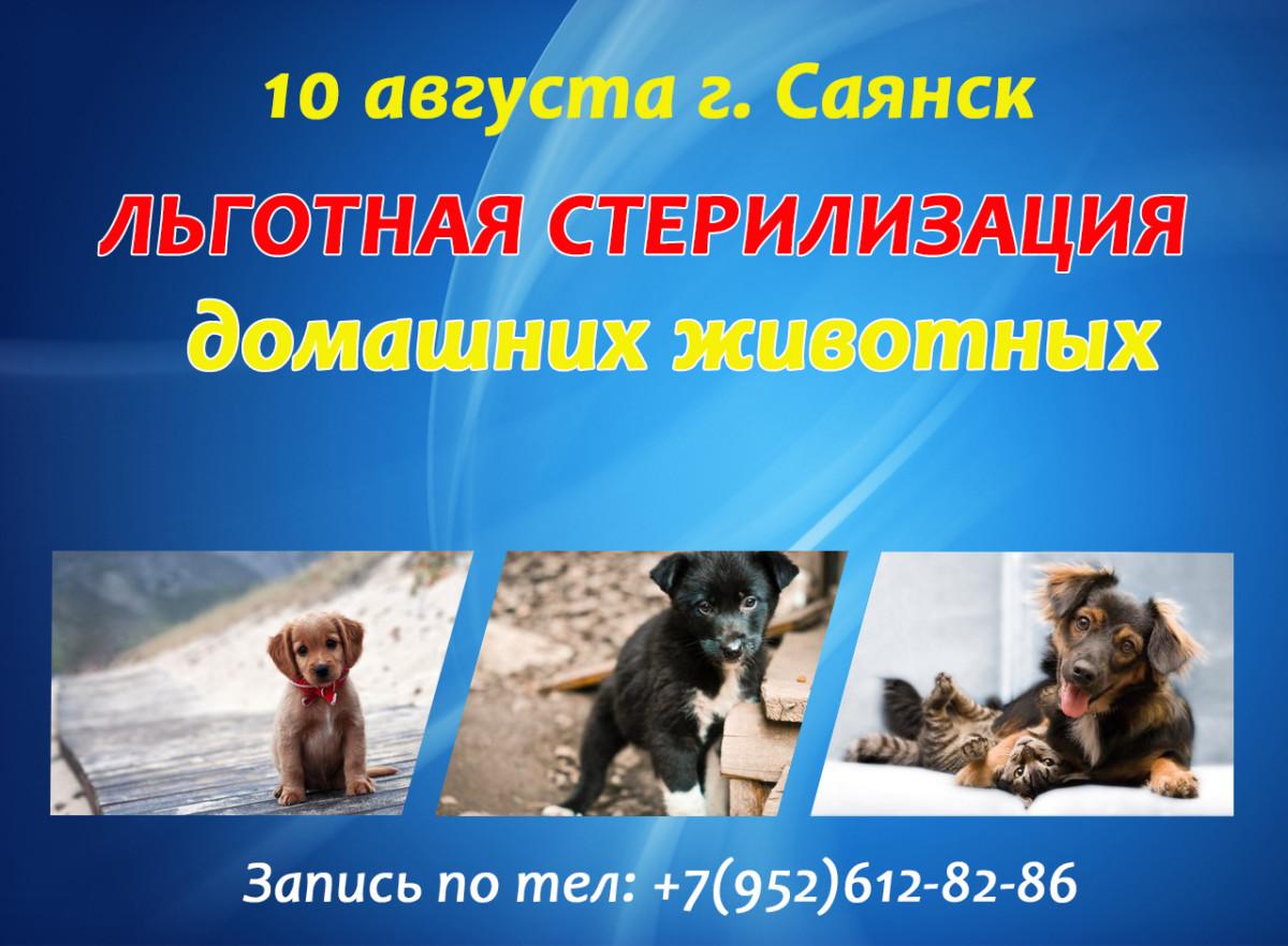 10 августа льготная стерилизация в г. Саянск