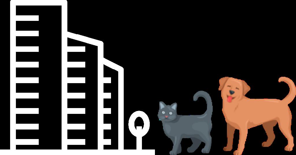 Что делать если в подъезд подбросили животное?
